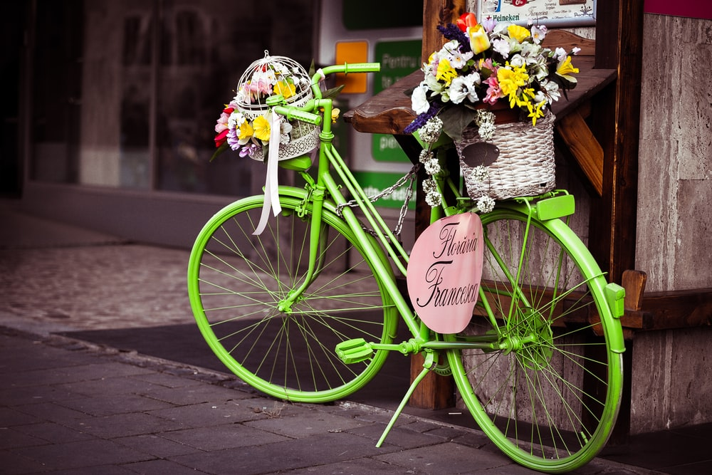 basket of petaled flower ongreen city bike