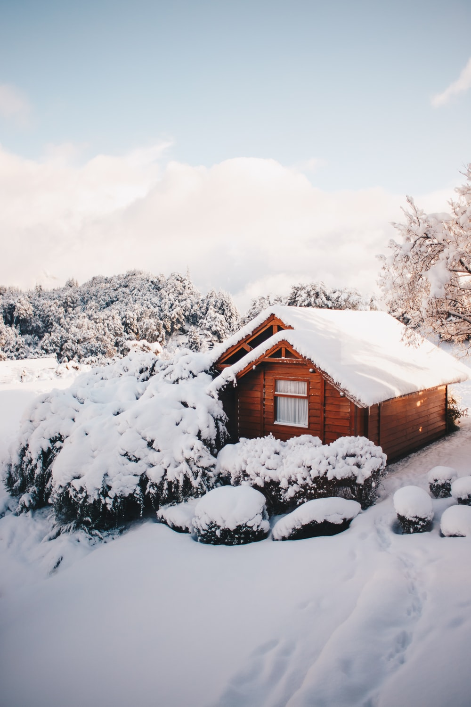 brown cabin at winter