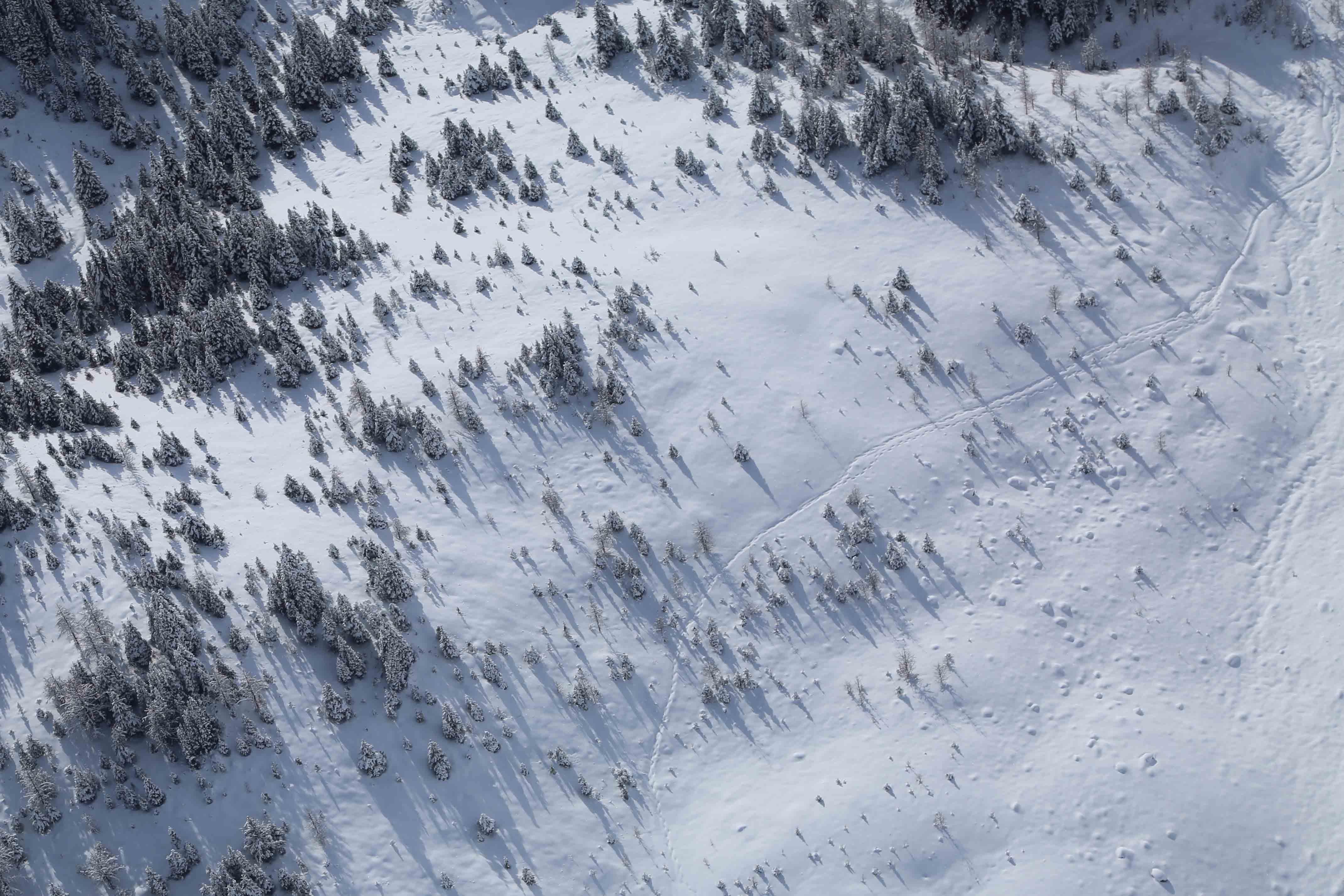 bird's eye view photography of snow