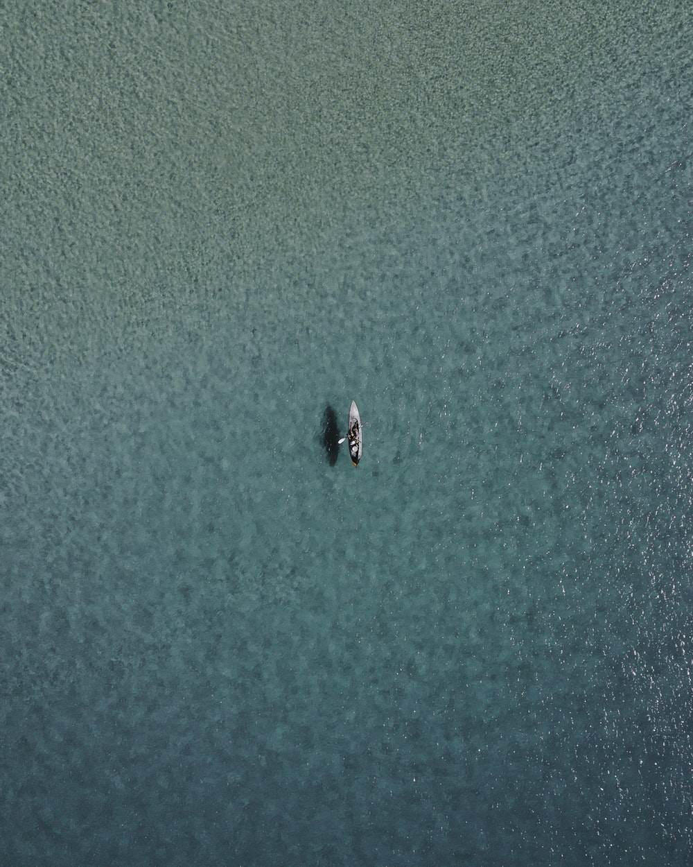 white paddle boat on body of water