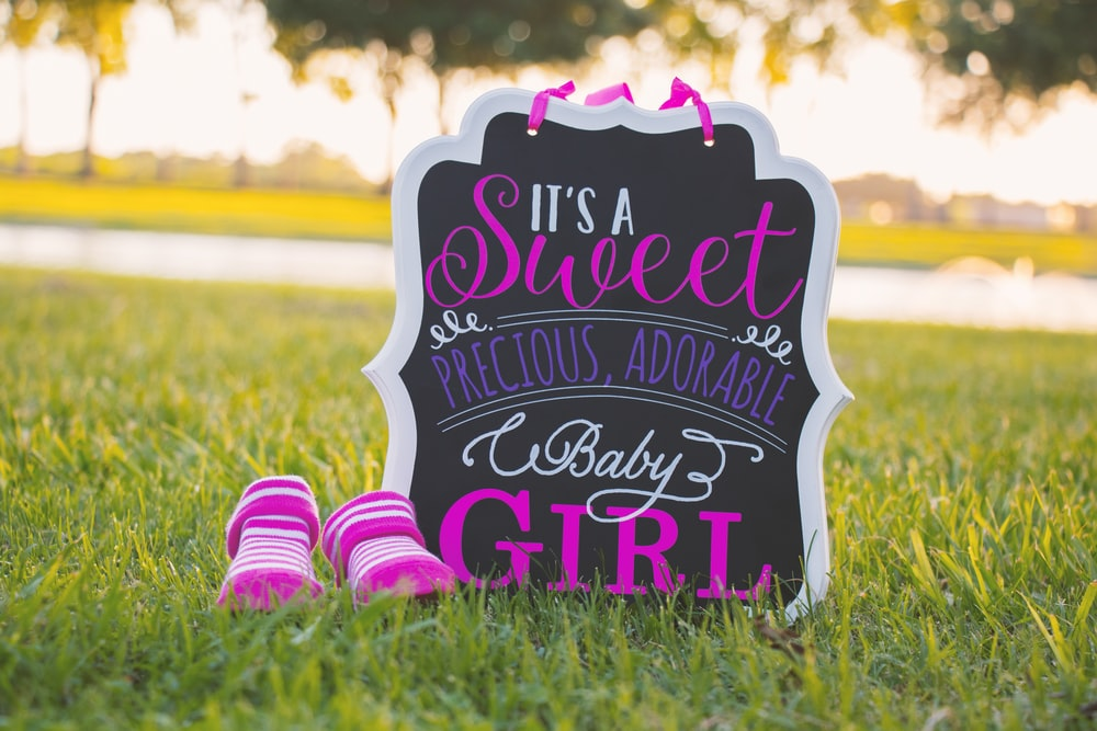 it's a sweet precious, adorable baby girl signage on green grass