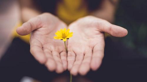 How Forgiveness Raises your Vibration