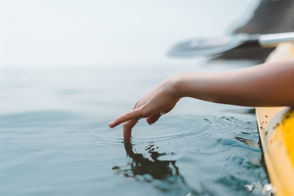 person touching body of water