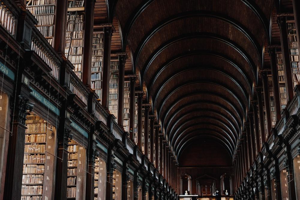 landscape photo of library hallway