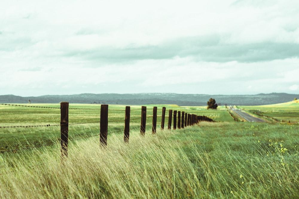 brown wooden farm posts