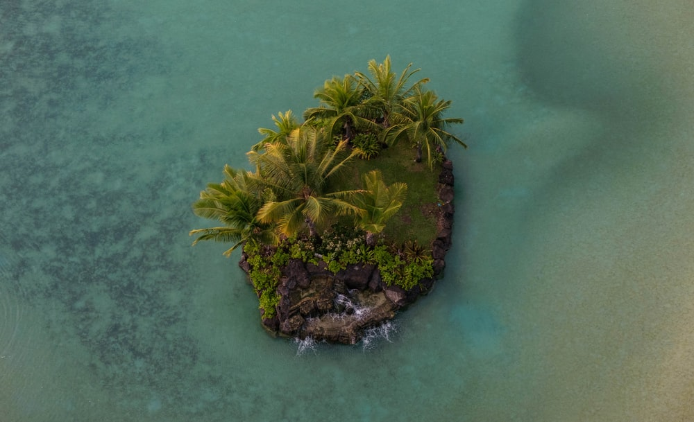 aerial photo of island with palm trees and rocks