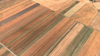brown flooring lithuania teams background