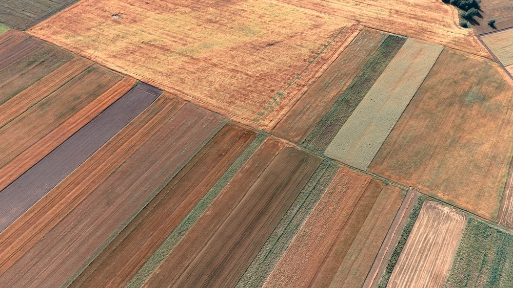 top view of brown field