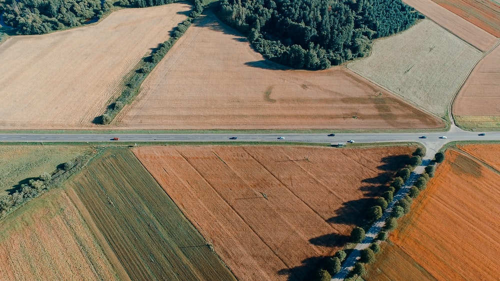 aerial photography of field during day time