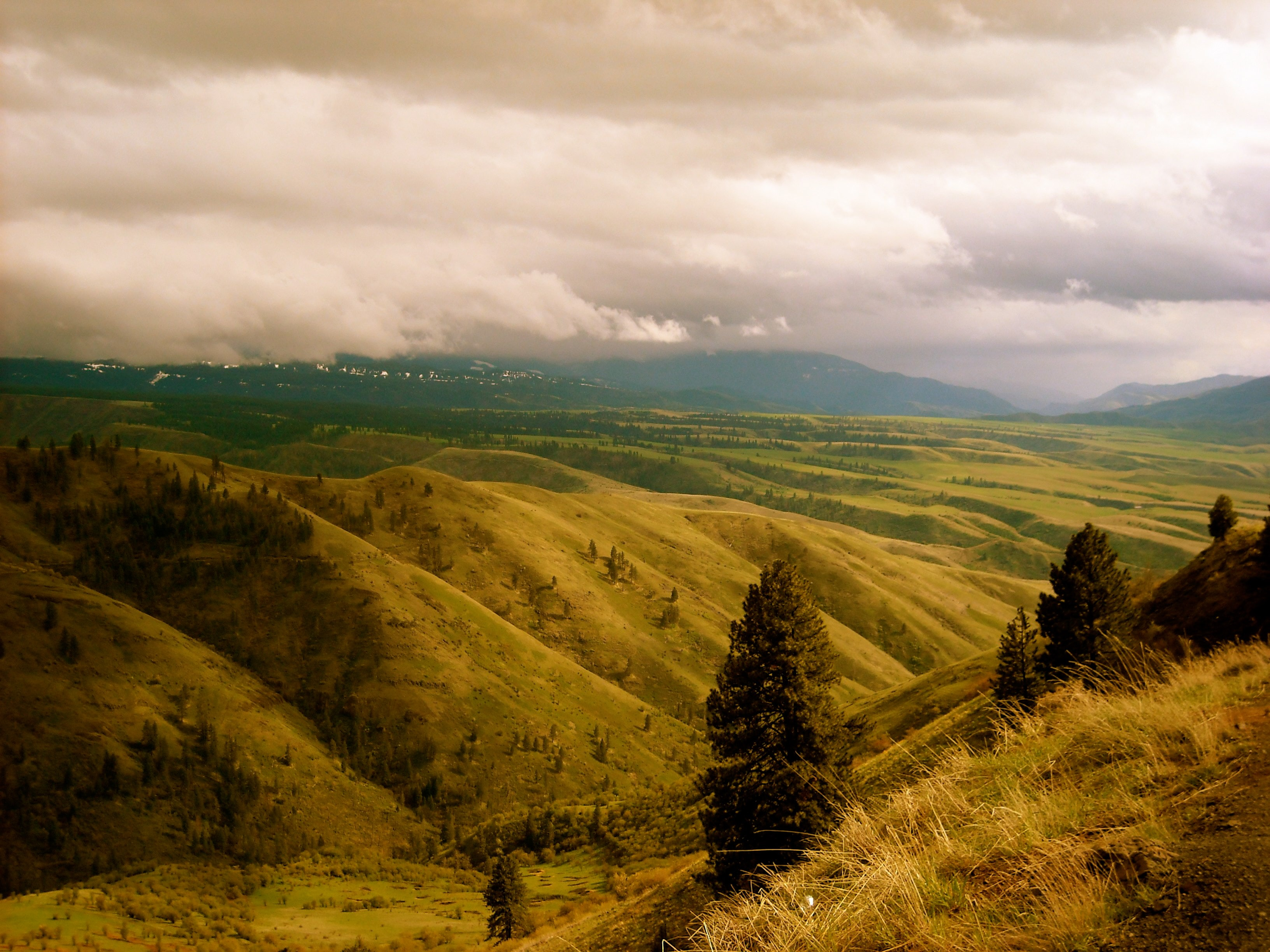green grass filled mountains under white clouds
