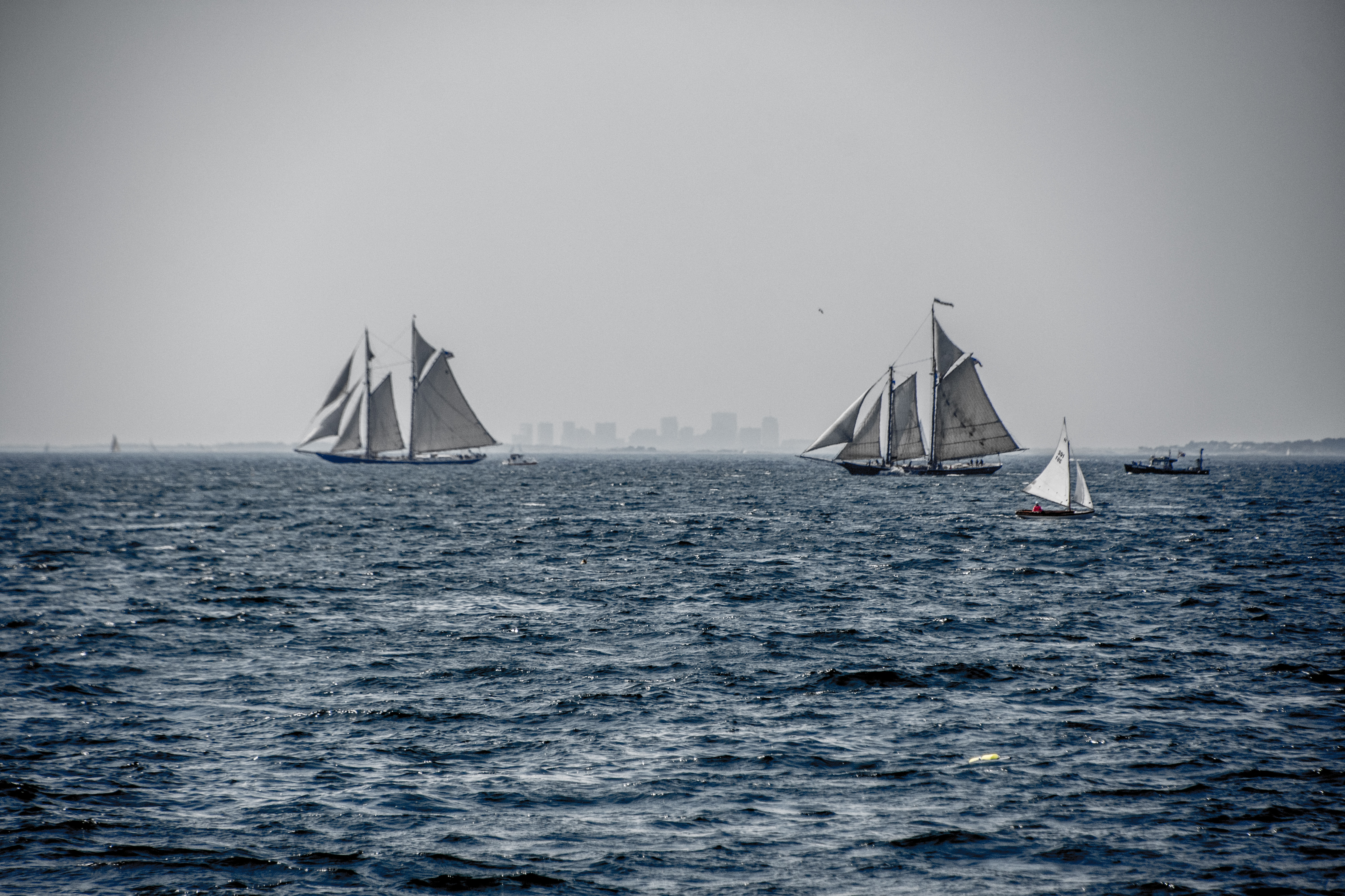 three white sailing boats on body of water