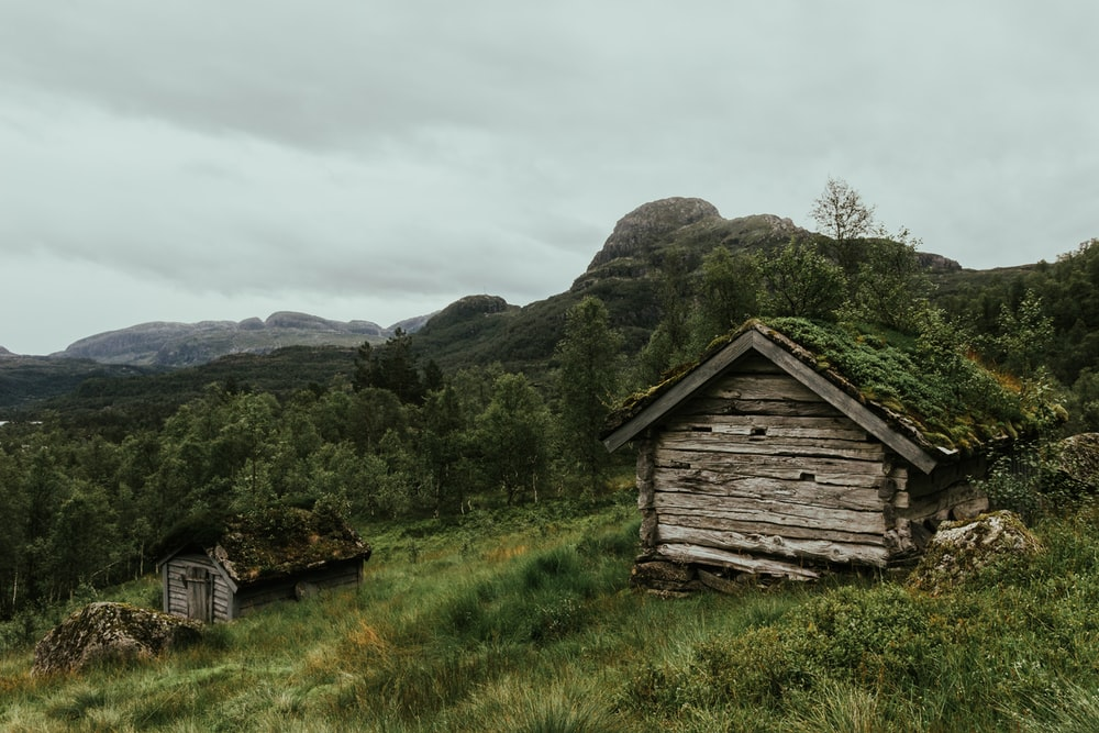 two gray wooden hut beside green leaf tress across mountain - Norway