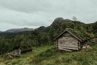 two gray wooden hut beside green leaf tress across mountain
