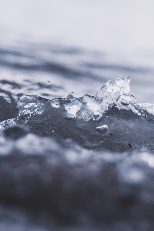 macro photography of water