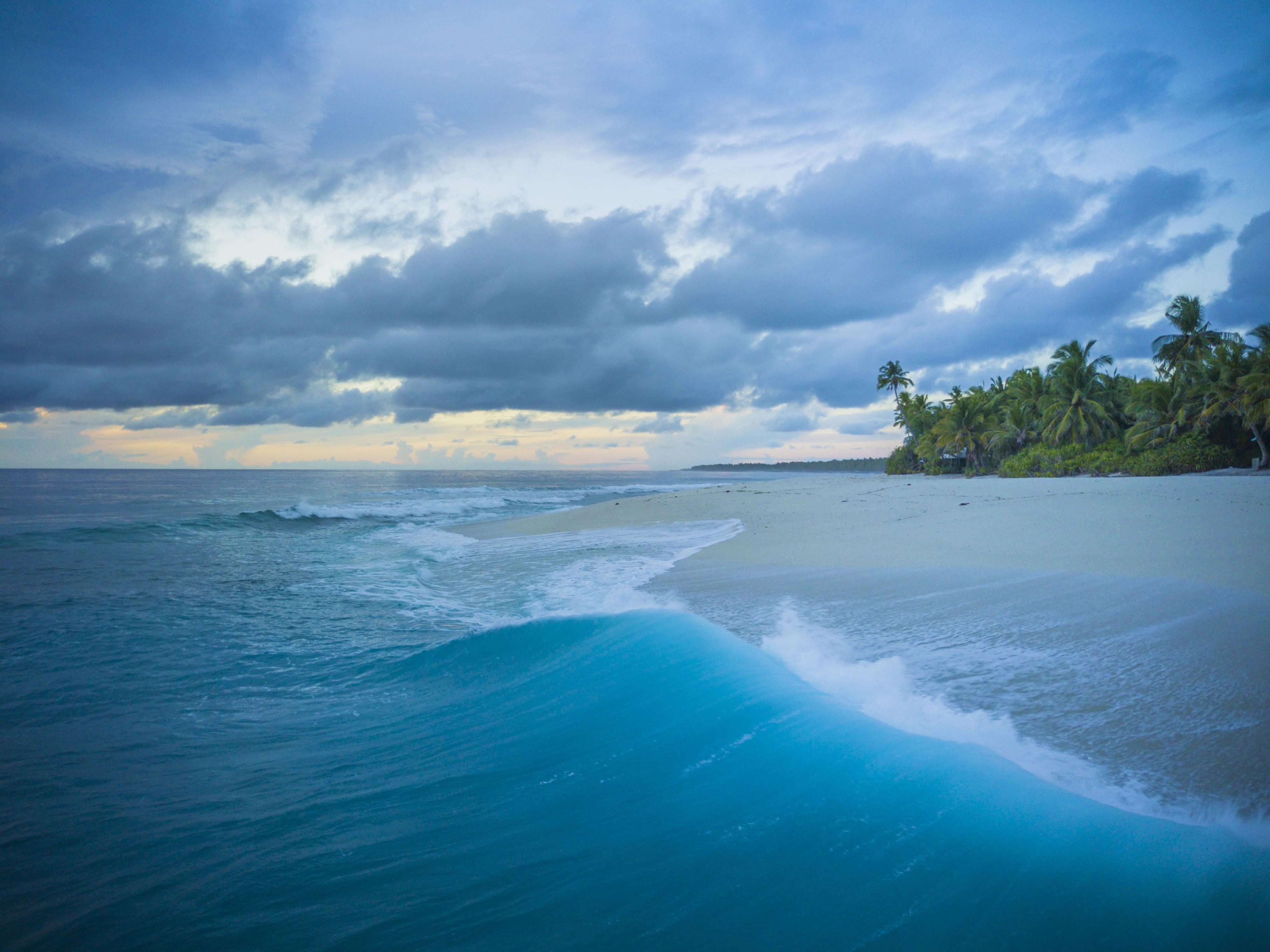 sea waves splashing on seashore during golden hour painting