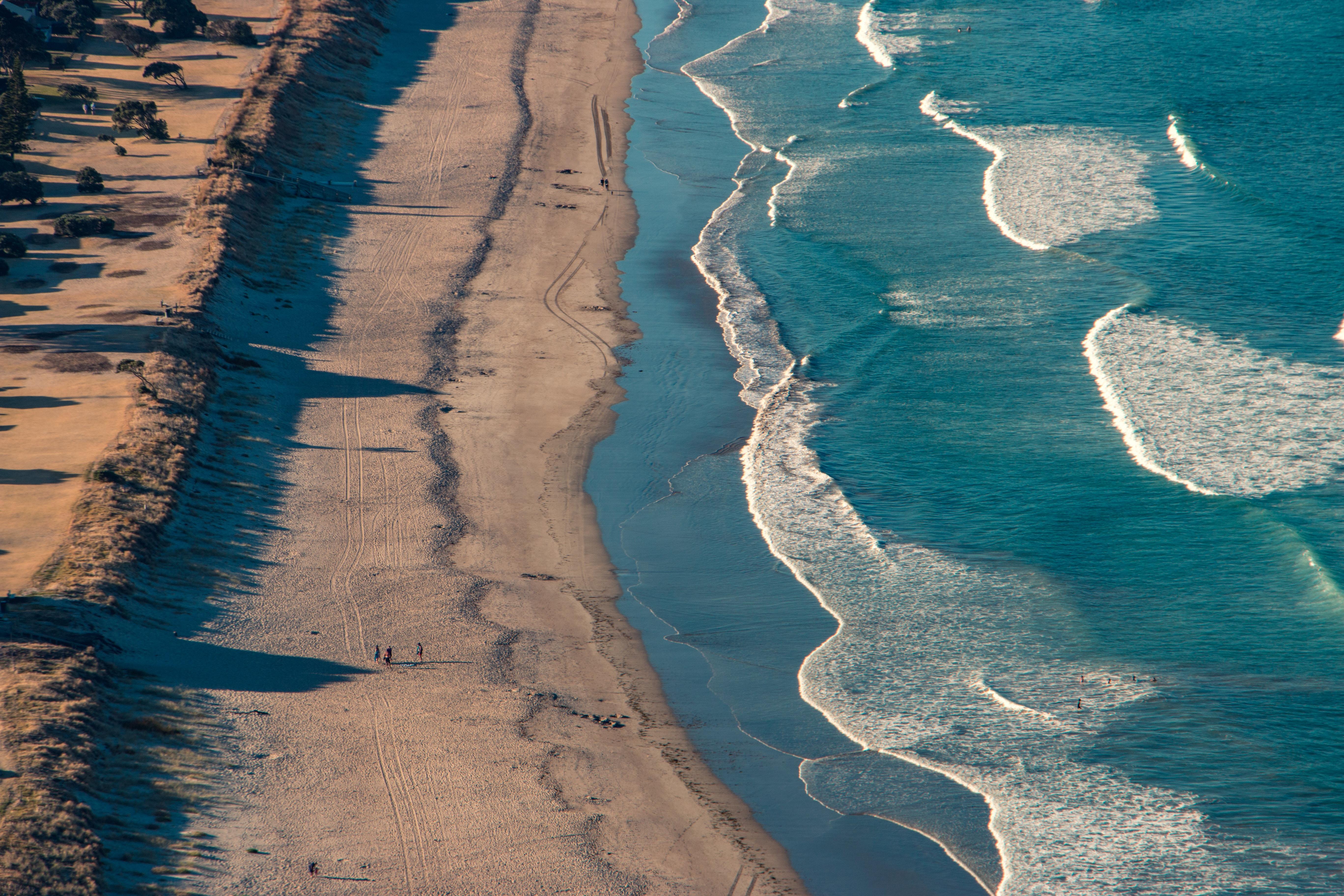 aerial photo of brown sandy beach