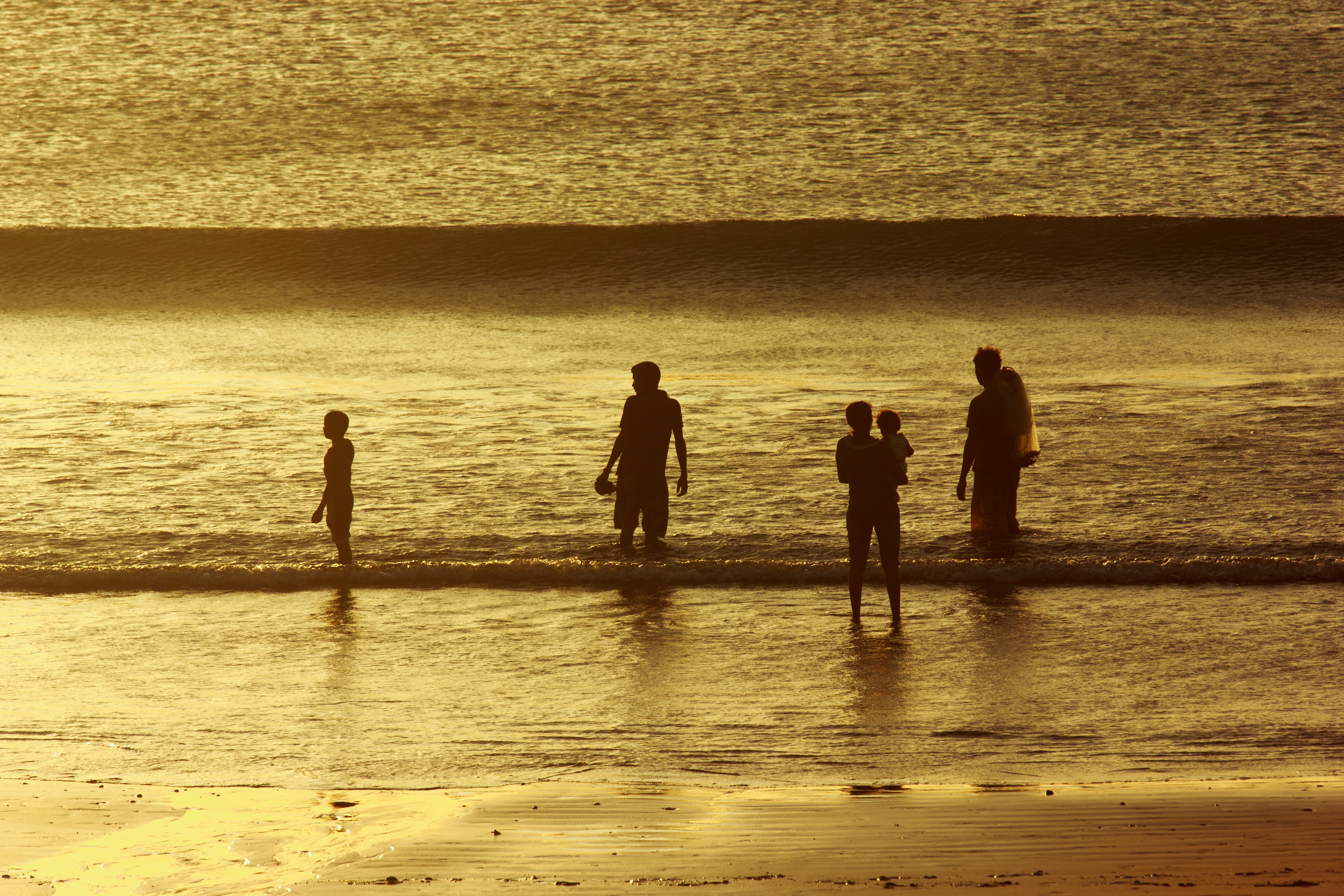 people walking on shore during golden time