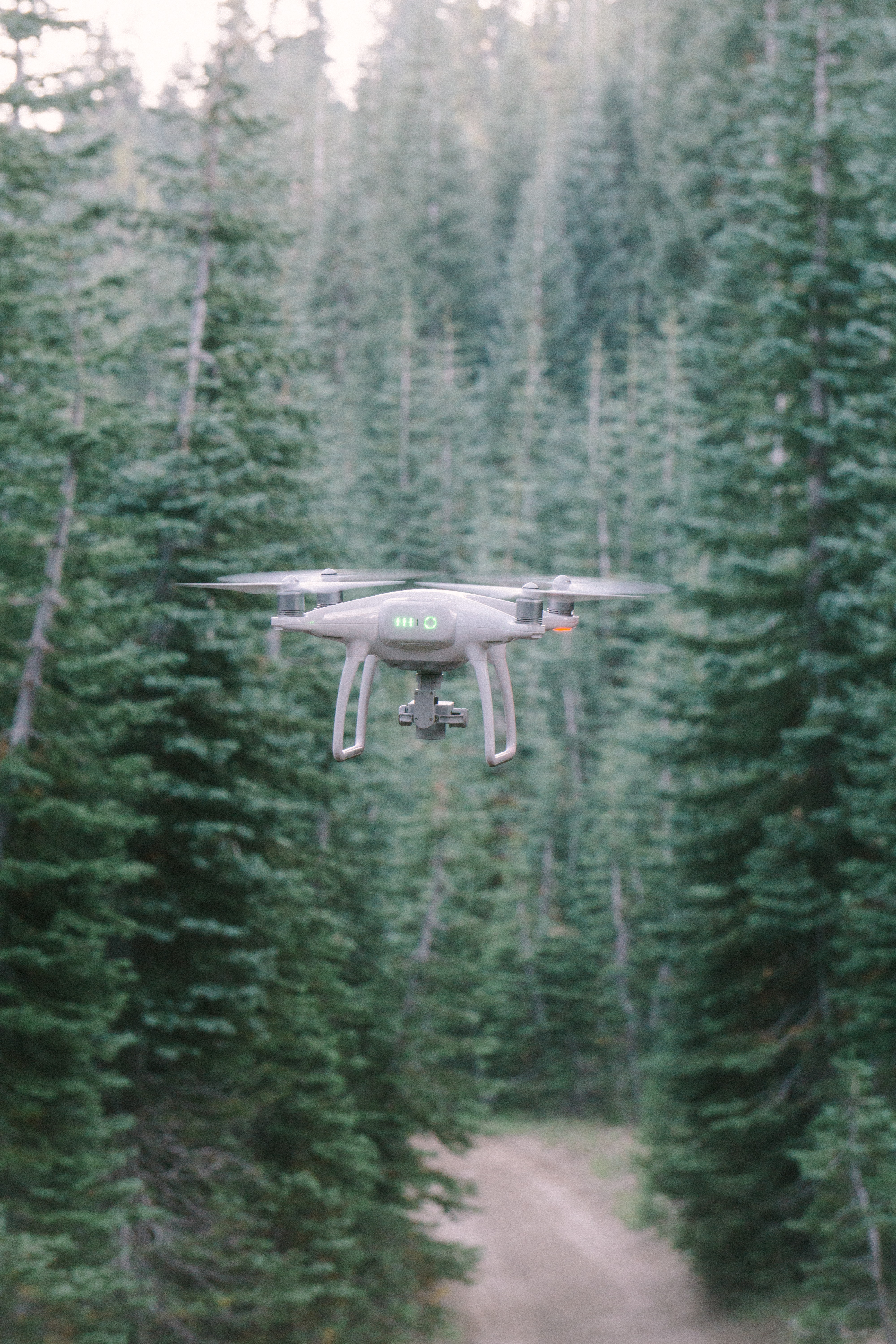 gray quadcopter drone in the middle of forest during day