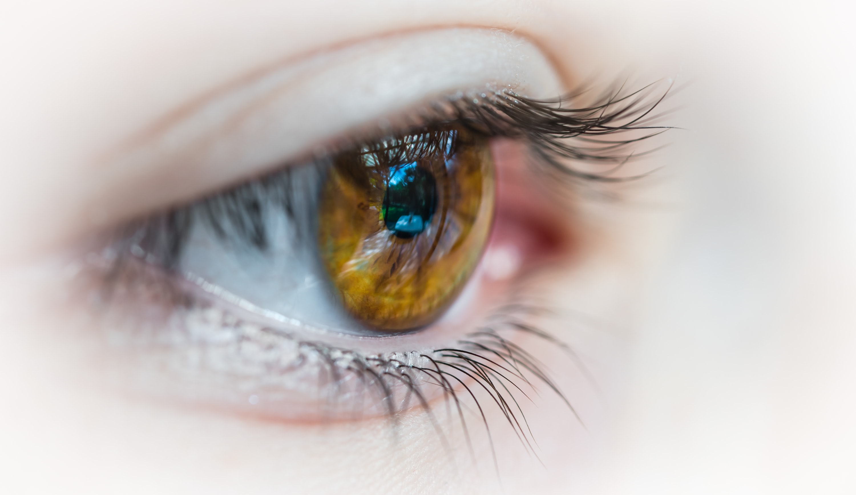 selective focus photography of human eye