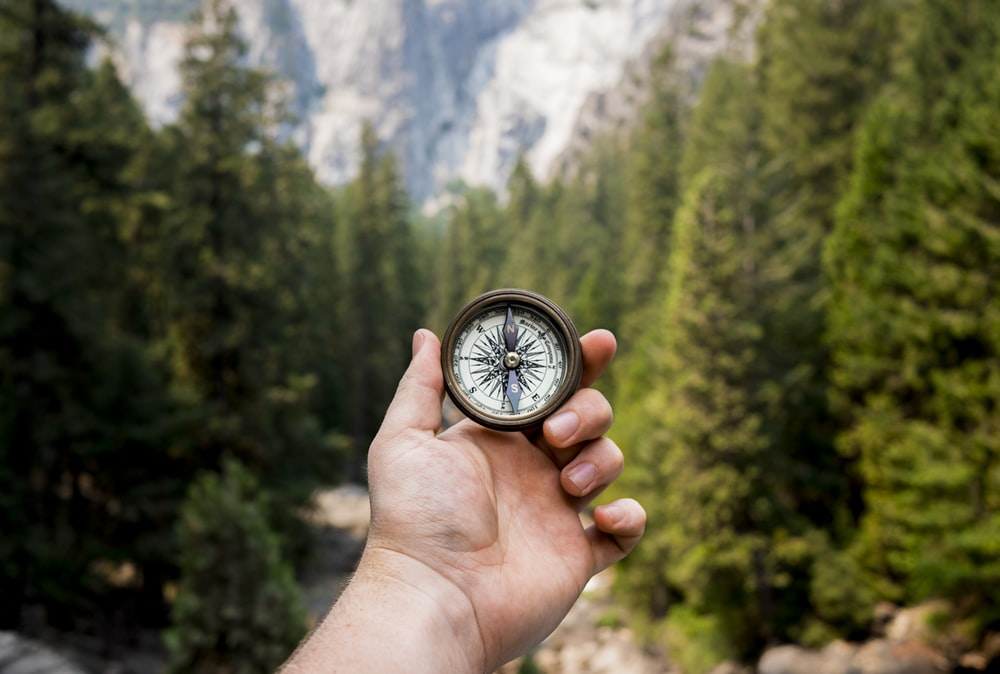 person holding compass facing towards green pine trees