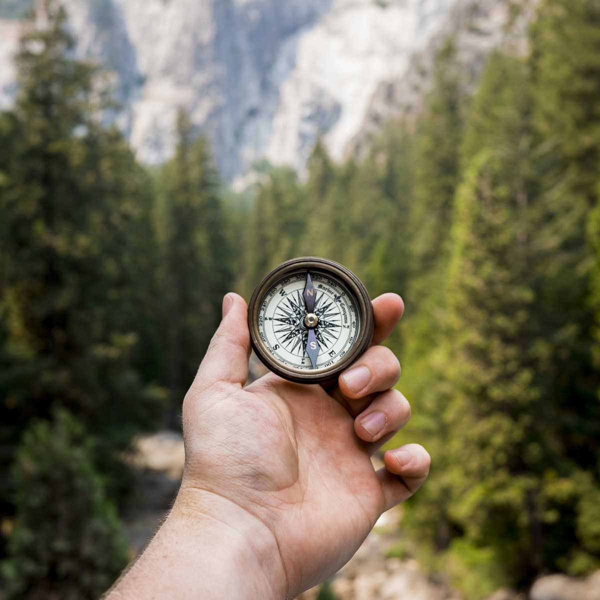 Hand holding a compass in the wilderness