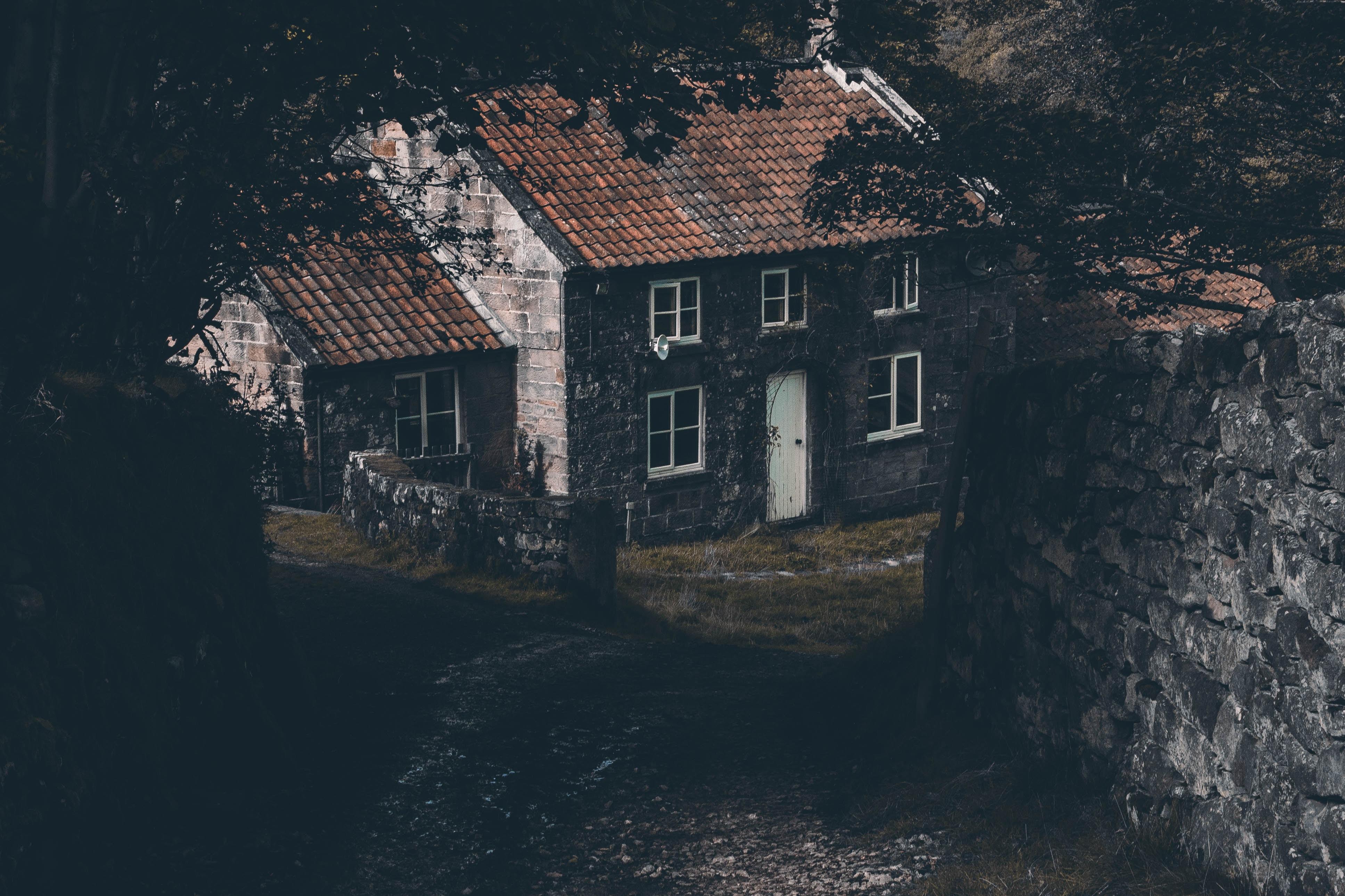 gray house near tree and wall