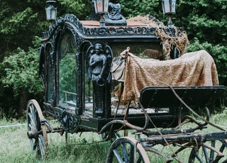 black and brown metal carriage on grass field
