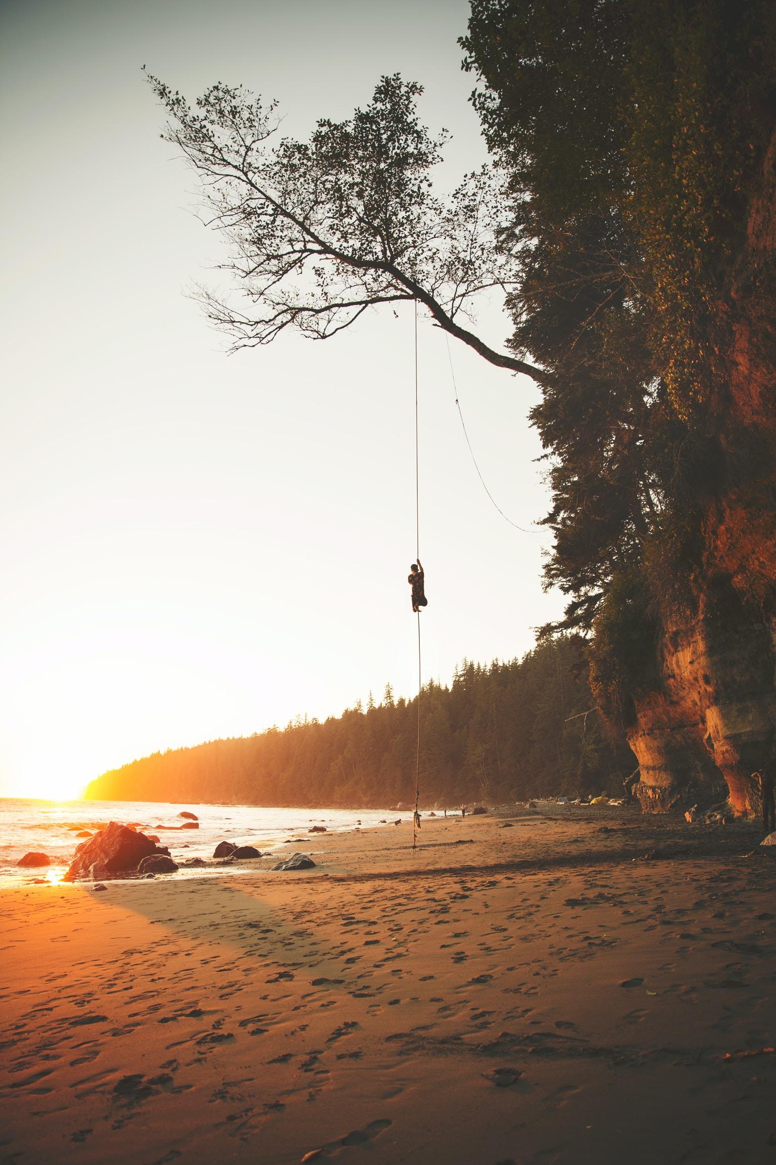 man climbing tree during golden hour