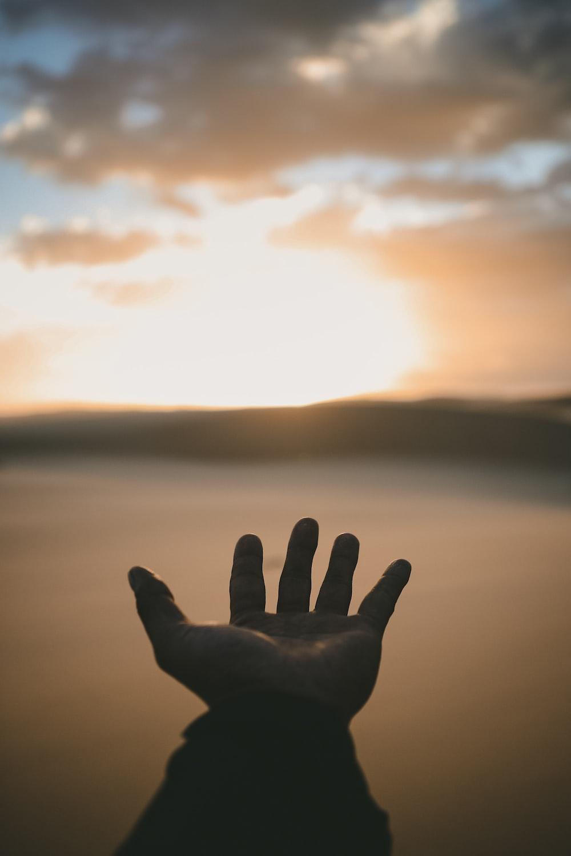 person's hand
