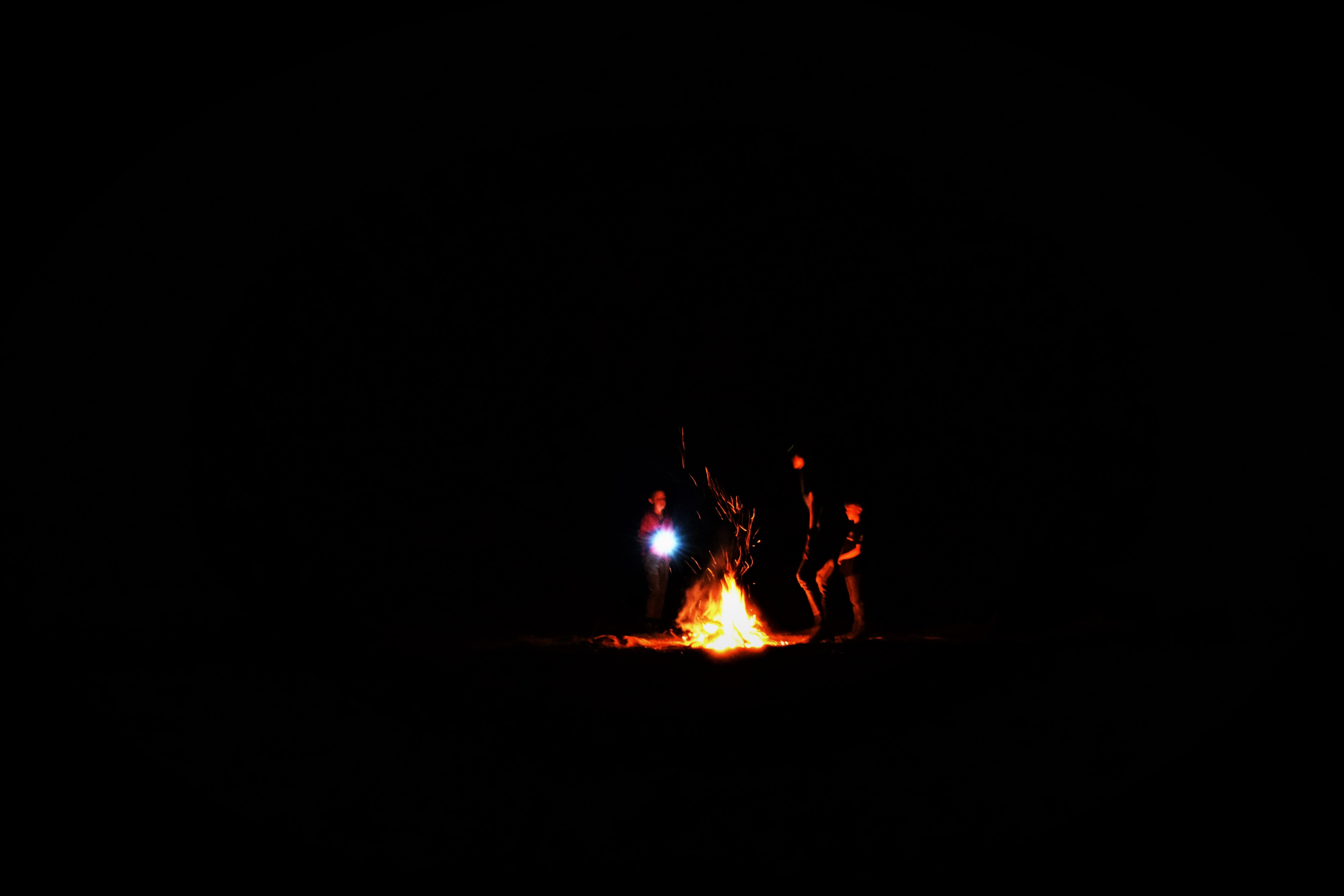 silhouette photography of bone fire