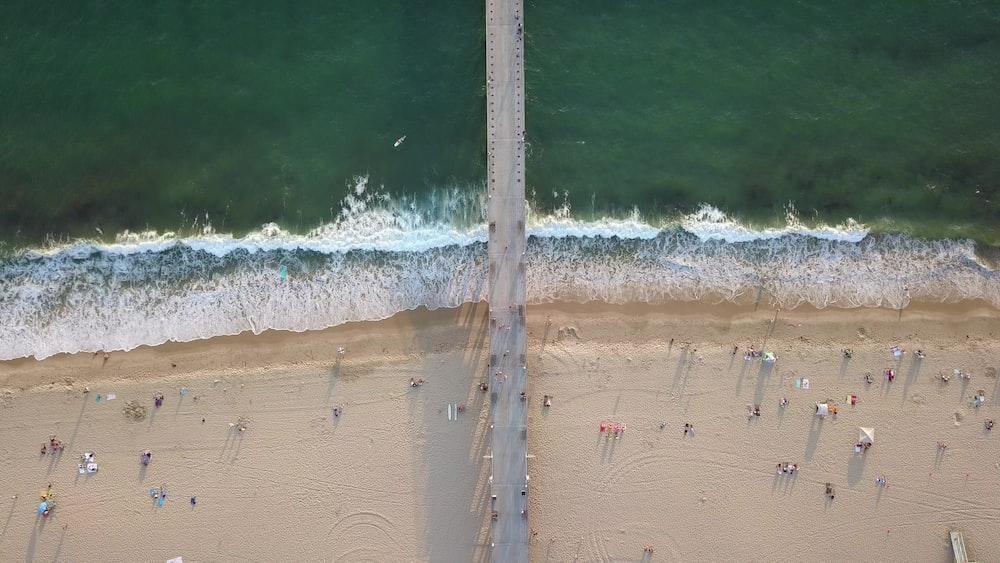 bird's eye photography of people at beach