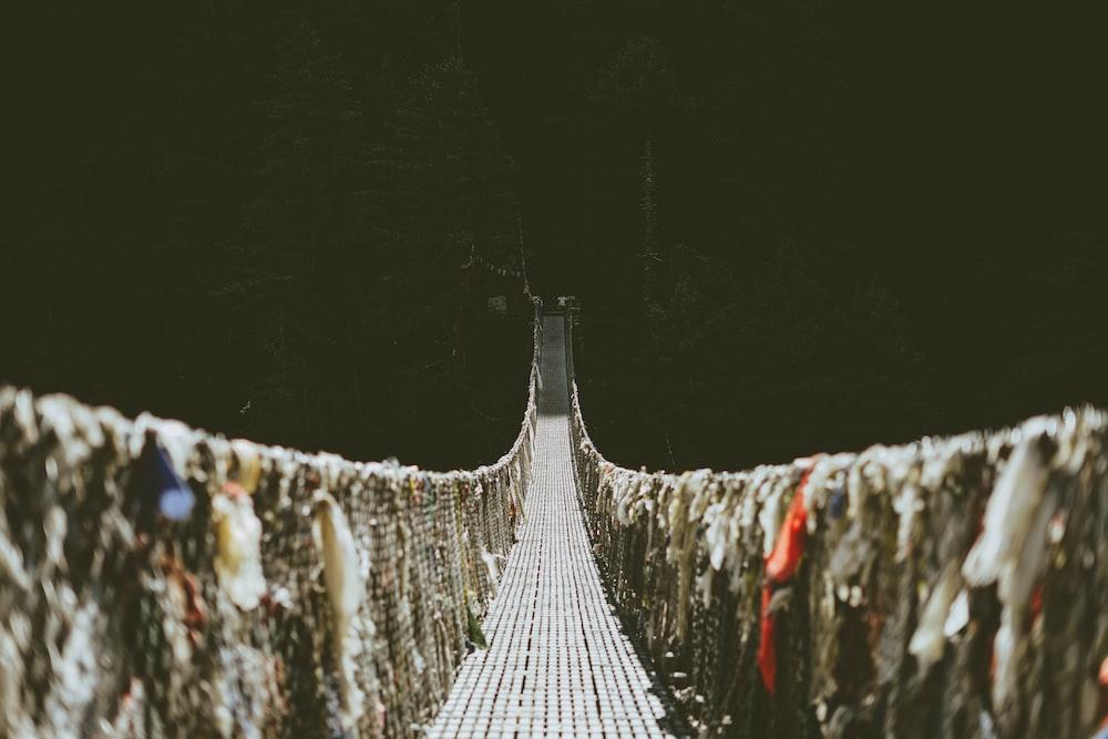 hanging bridge selective focus photography