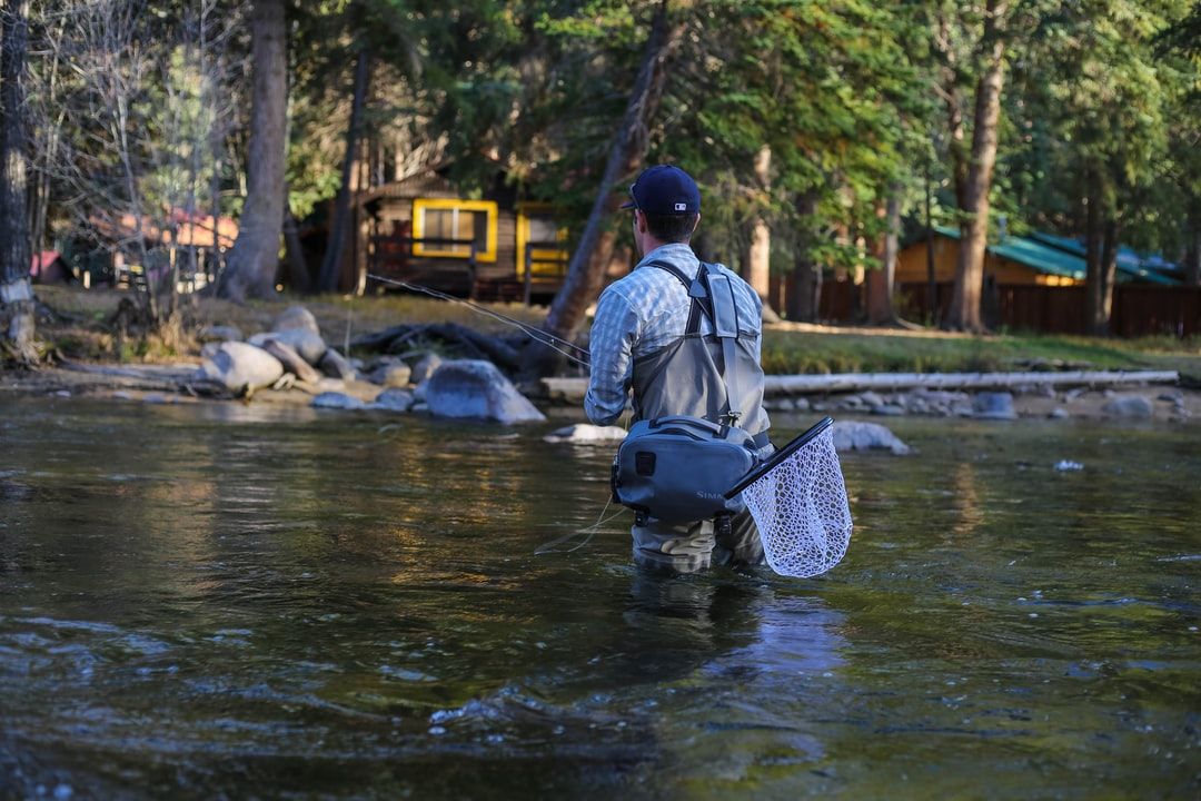 Fly Fishing In The Woods