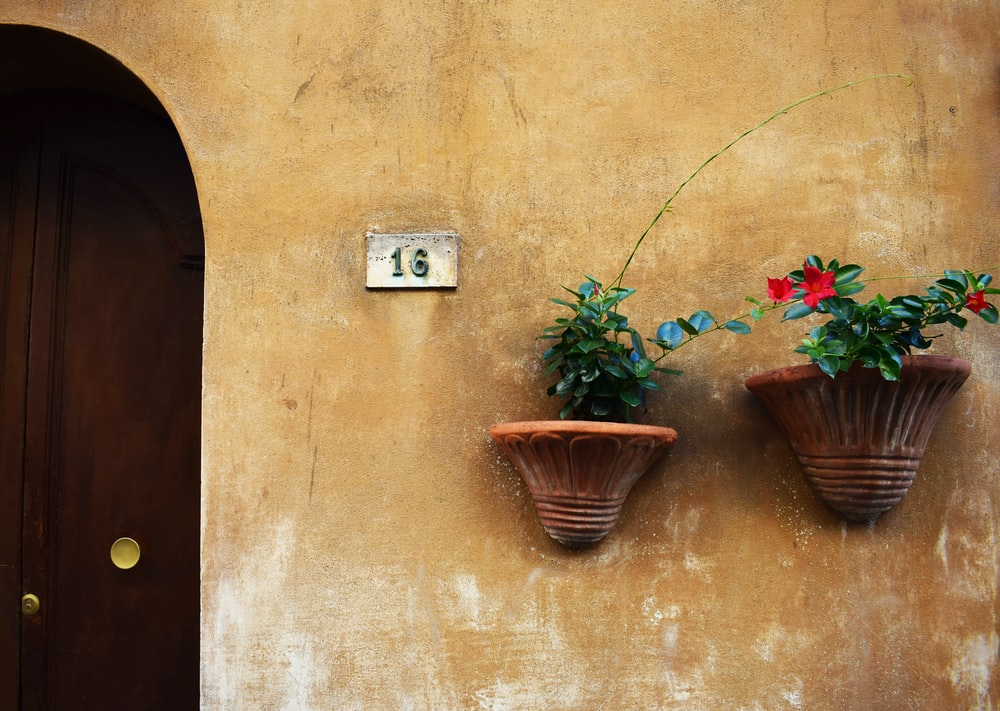 two brown concrete planters on brown painted wall