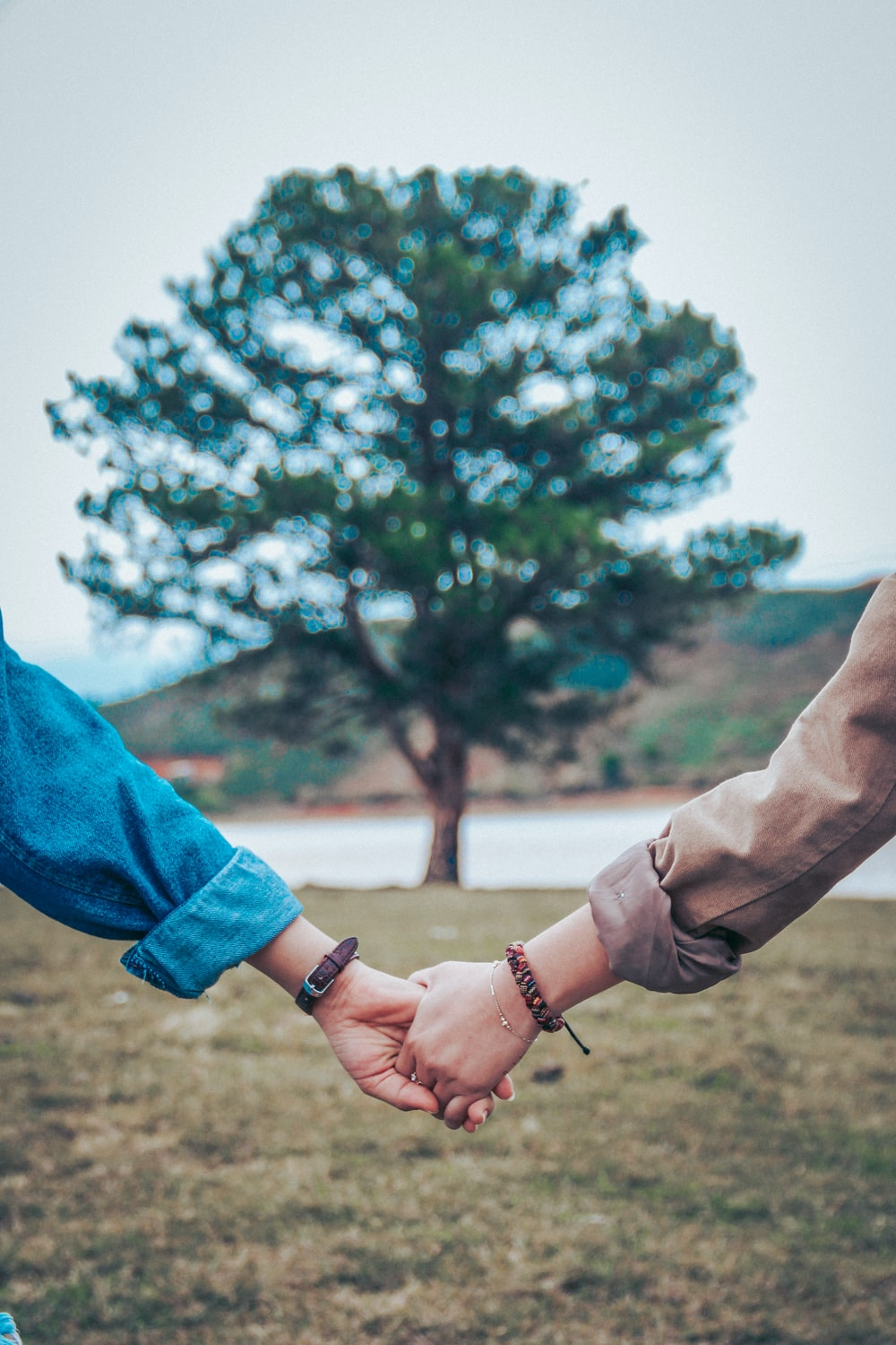 two persons holding hands