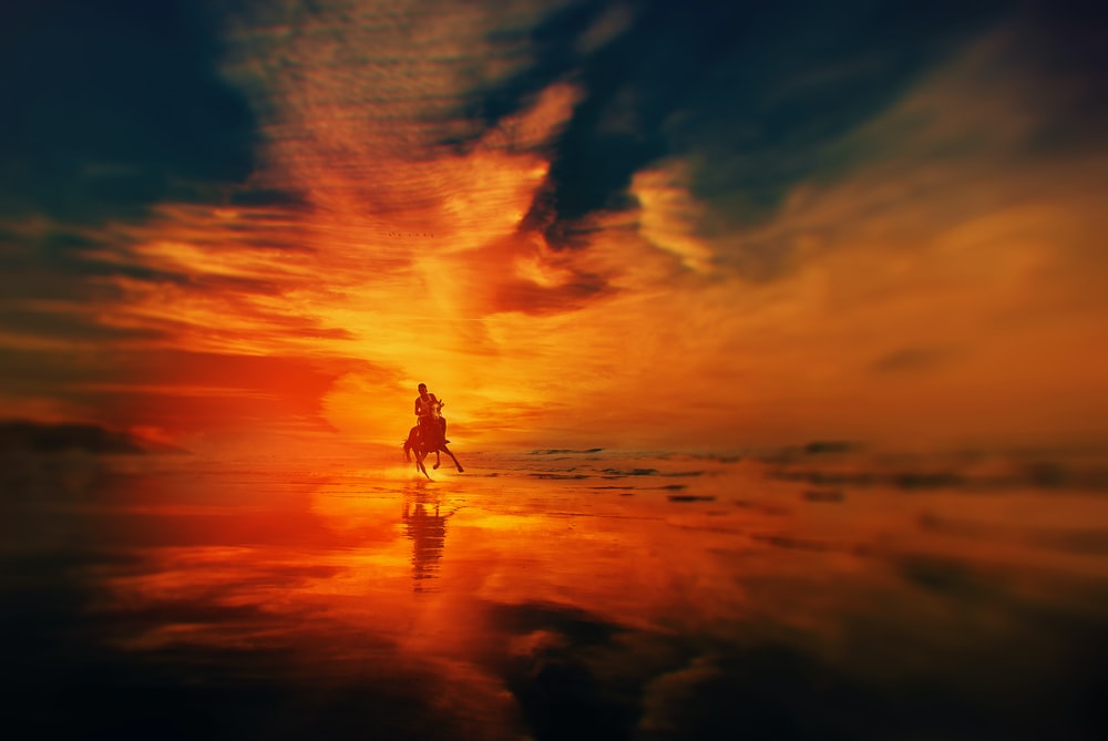 silhouette of man riding a horse