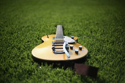 jazz acoustic guitar on lawn garland zoom background