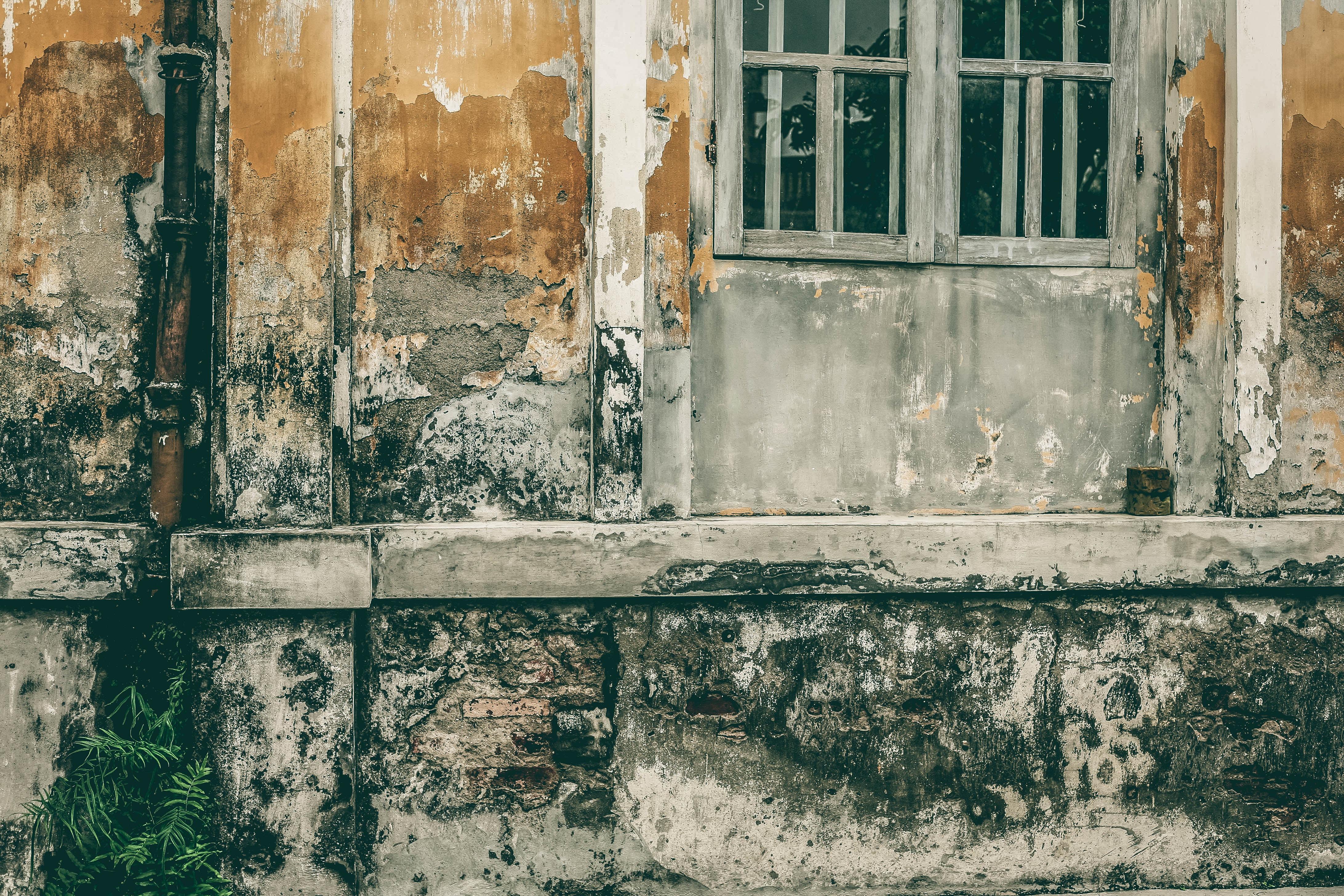 shallow focus photography of gray wooden door