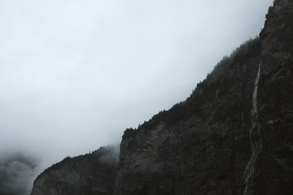 gray cliff covering with fog