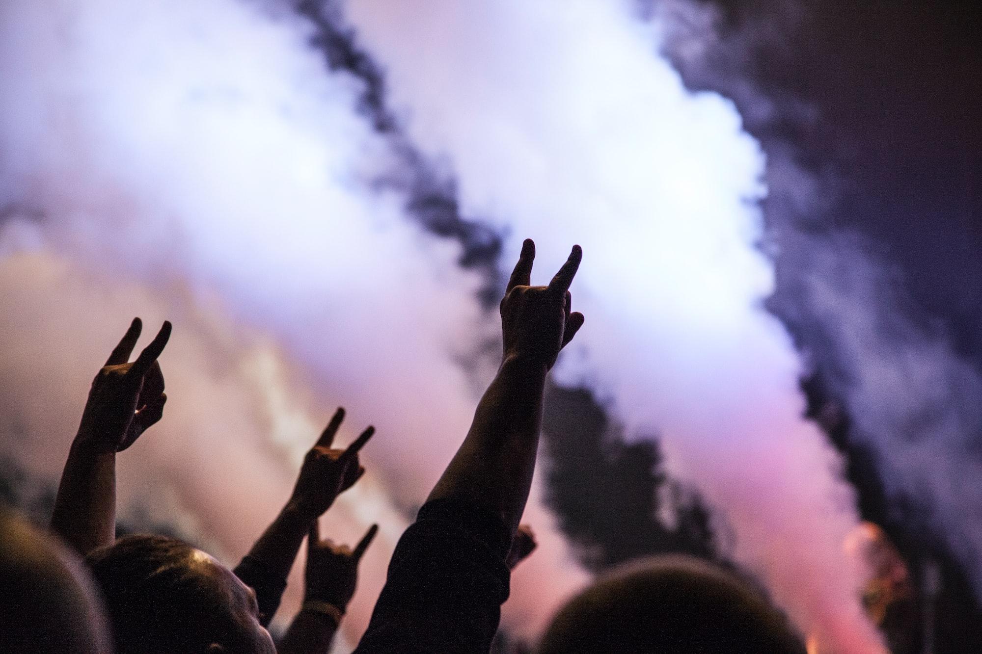 Fans at a rock show