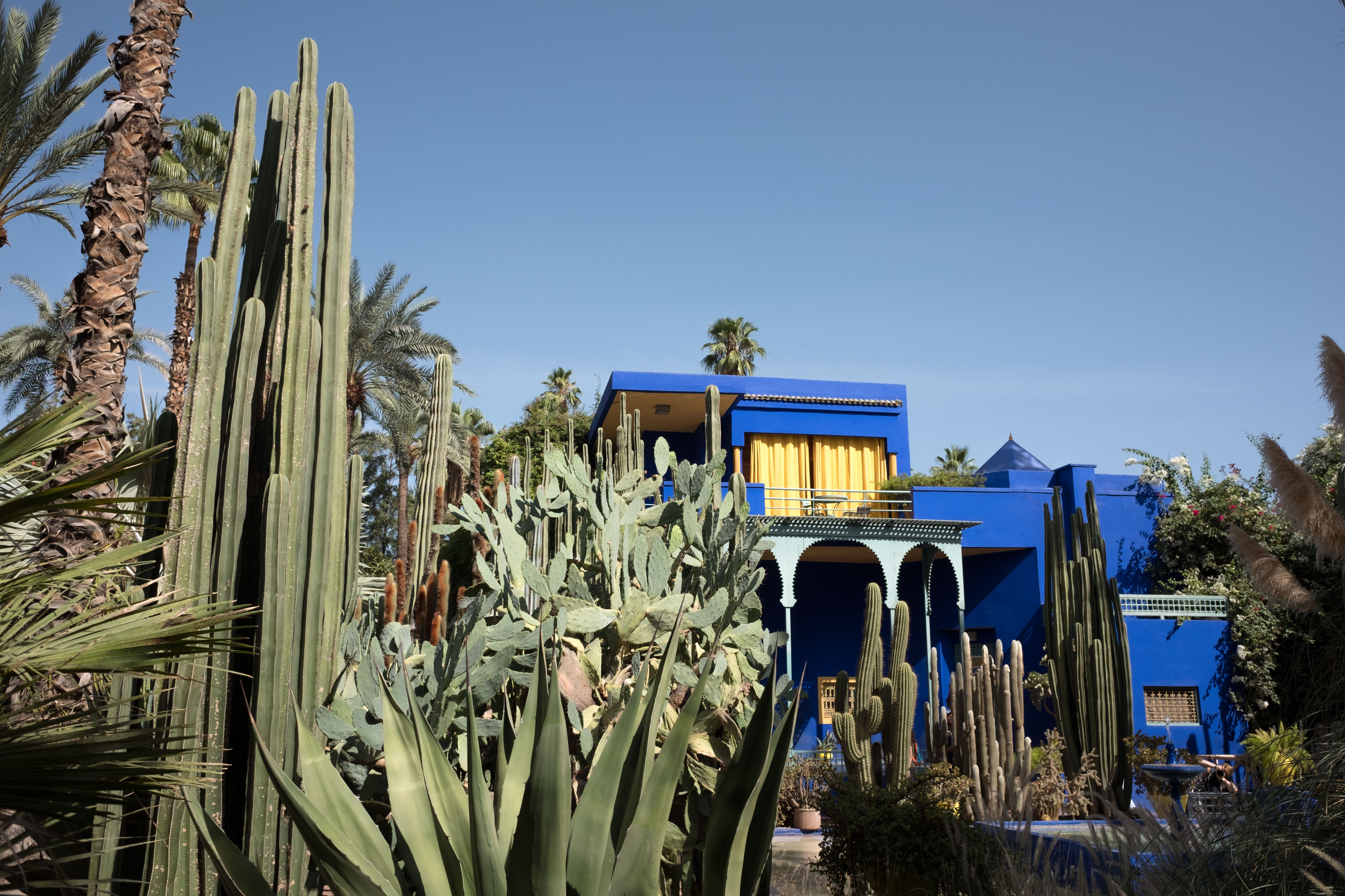 photo of blue 2-storey house surrounded by cacti