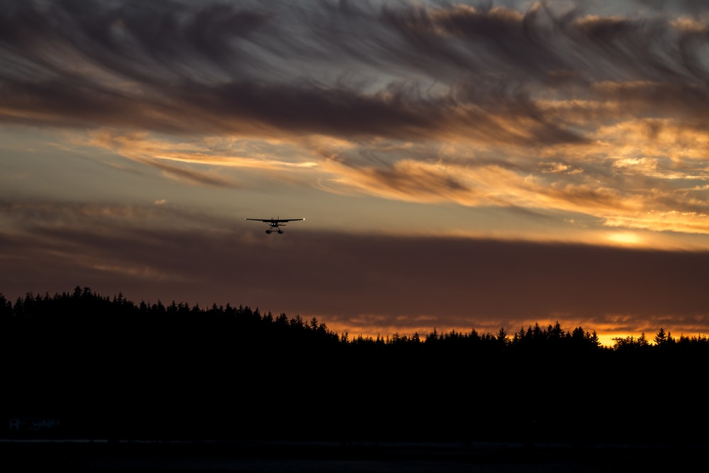 biplane on air above silhouette of trees during golden hour