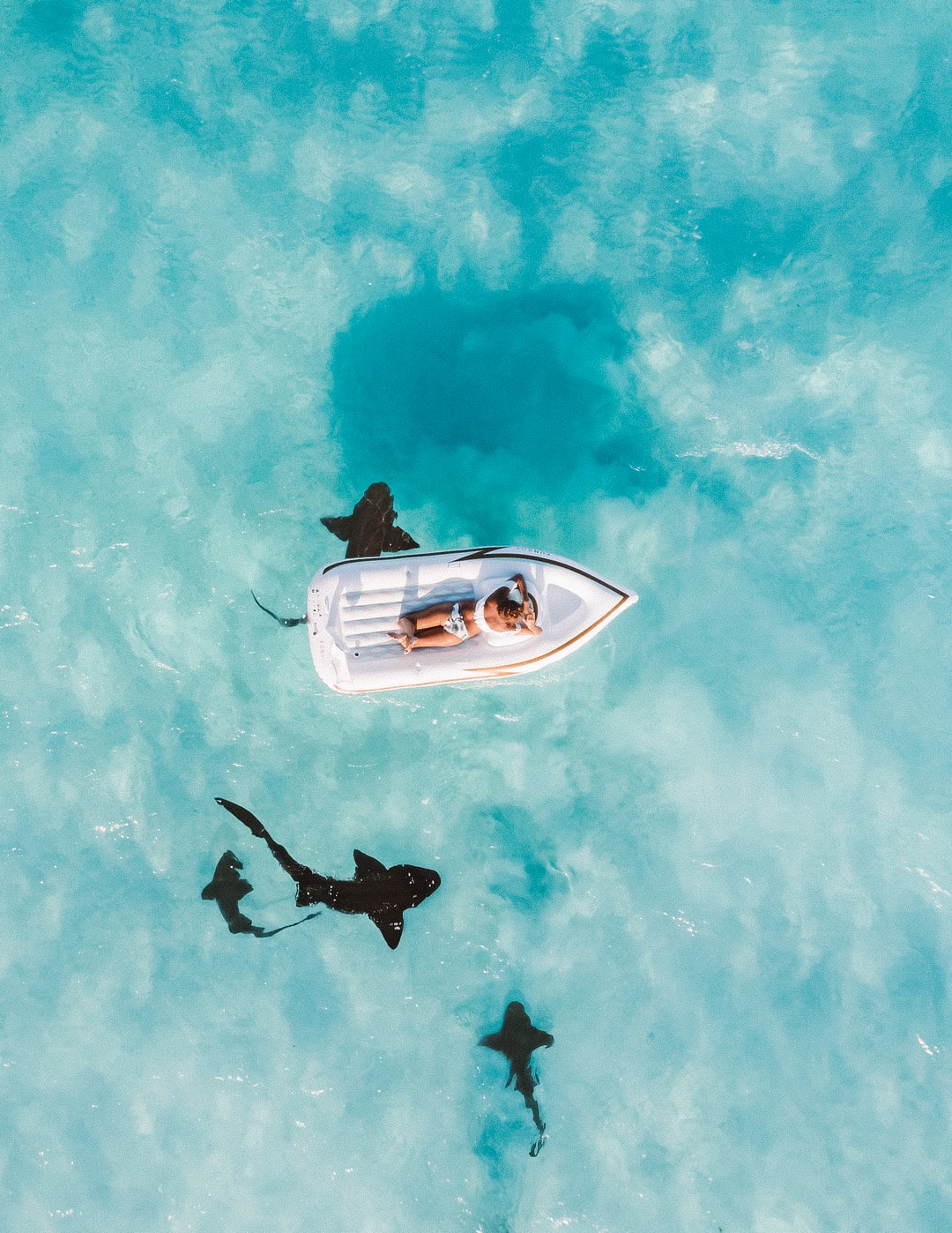 Floating over nurse sharks in the Bahamas on  Great Exuma. Cameras do not do the blue luminescence of the water here justice.