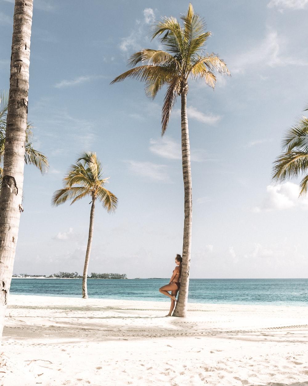 woman leaning on tree near beach