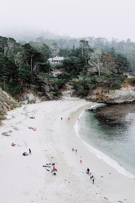 group of people standing beside the seashore