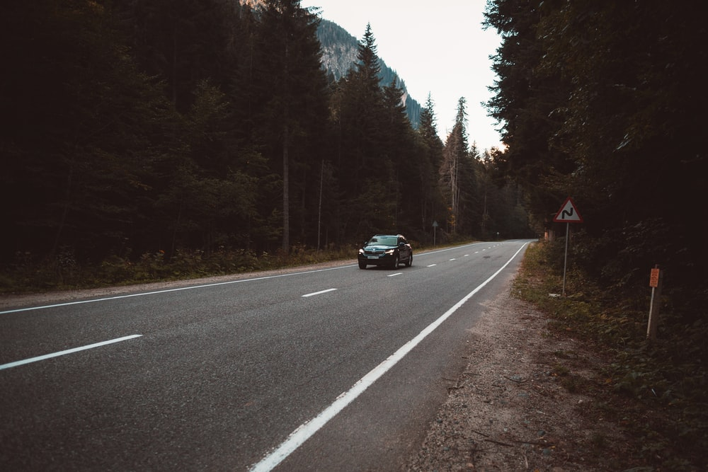 time lapse photography of car passing through trees