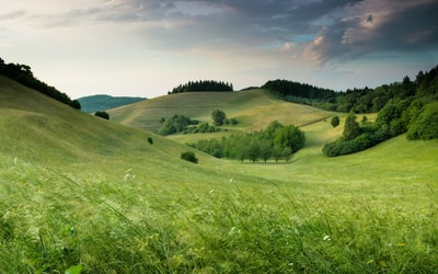 green hills with forest under cloudy sky during daytime landscape teams background