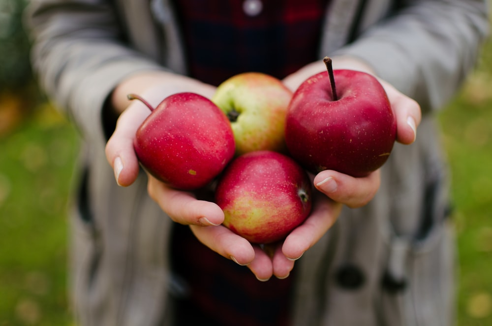 person holding four red apples