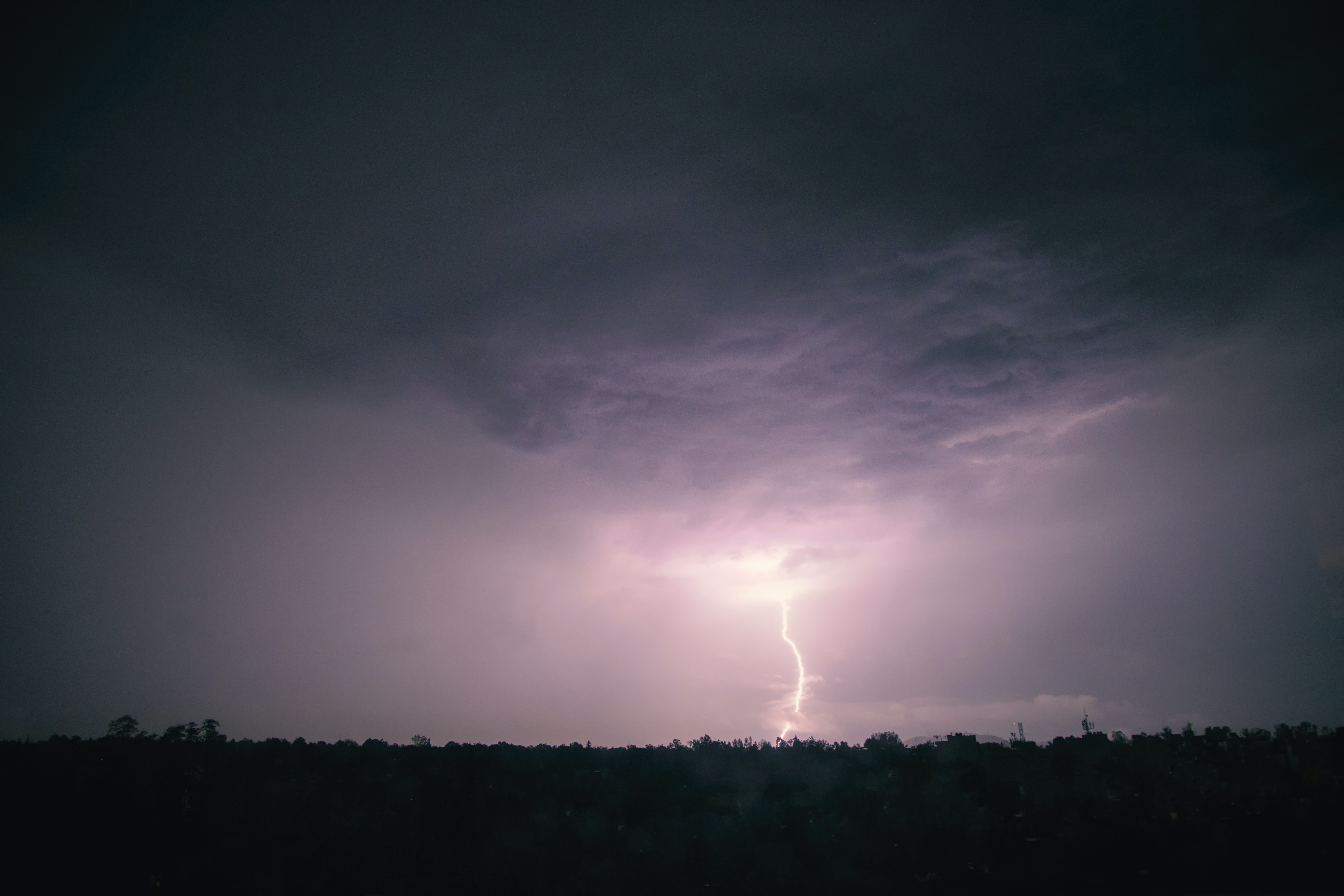 silhouette of trees under gray clouds with thunder at nighttime