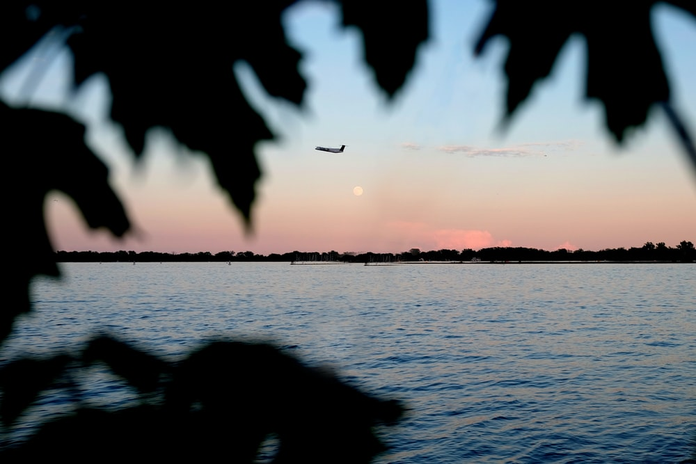 silhouette photo of plane on air